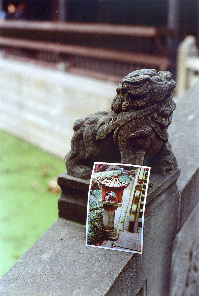 Photo in a Photo: Kyoto
